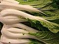 Starr-070730-7871-Brassica rapa-Chinese cabbage-Foodland Pukalani-Maui (24797118771).jpg
