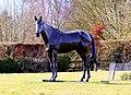 Statue of Best Mate - geograph.org.uk - 1769624.jpg