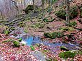 Stephen's Creek - panoramio (1).jpg