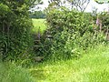Stile on the footpath between Budock and Kergilliack - geograph.org.uk - 837390.jpg