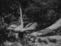 File:Straight Shooting (1917) - Long version.webm