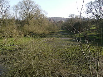Dud Dudley - The Staits Brook at Askew Bridge. Extant banks around this marshy area suggest it was formerly a small reservoir. Below this, the brook runs with considerable force even in dry weather, making this a good spot for water-driven machinery.
