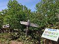 Summit of Mt. Hakamagoshi-dake.JPG