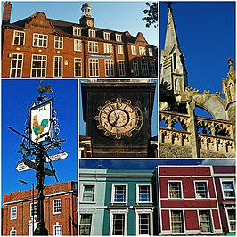 Sutton collage (4).jpg