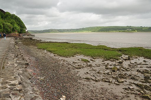 Taf Estuary at Laugharne (5920)