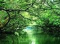 Tainan Sihcao Wetland.jpg