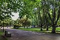 Tammsaare park 2.jpg