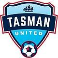 Tasman United logo.jpg