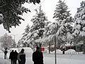 Tatvan in winter.jpg