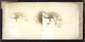 Terrapin Tower from below Goat Island, from Robert N. Dennis collection of stereoscopic views.png