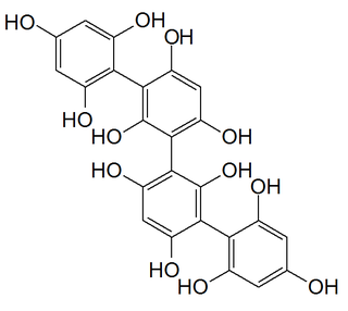 Phlorotannin class of chemical compounds