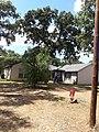 Texan house with live oaks.jpg