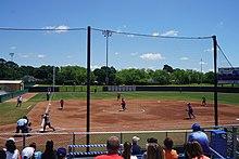 UT Arlington Mavericks softball - Wikipedia