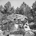 The British Army in Italy 1944 NA16801.jpg