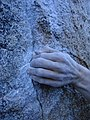 The Buttermilk Boulders - 15290712346.jpg