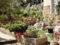 The Garden of Church of the Visitation גן כנסיית הביקור - panoramio.jpg