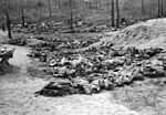 The Katyn Massacre, 1940 HU106212.jpg