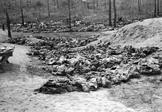 Soviet repressions of Polish citizens (1939–1946) - Image: The Katyn Massacre, 1940 HU106212