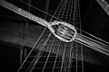 The Vasa Ship (8229700539).jpg