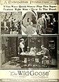 The Wild Goose (1921) - Ad 1.jpg