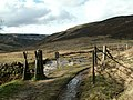 The entrance to access land at Crowden - geograph.org.uk - 763403.jpg