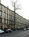 The oldest tree on Argyle Street (geograph 6000586).jpg