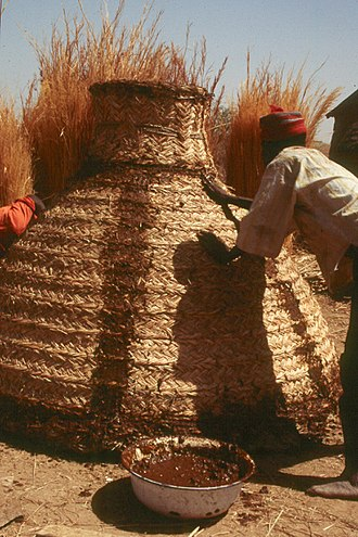 Food storage - A new braided granary is inaugurated. Kapsiki, North Cameroon.