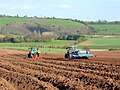 The spuds are going in 2 - geograph.org.uk - 1243116.jpg