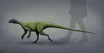 Thecondontosaurus life restoration 2018.jpg