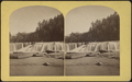 Third Fall, from Robert N. Dennis collection of stereoscopic views.png