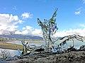 Tibet - 5782 - Way of Life and Death.jpg