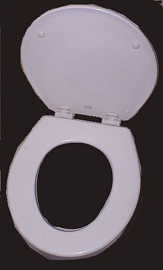 Toilet seat - A Bemis Manufacturing Company toilet seat for a flush toilet.