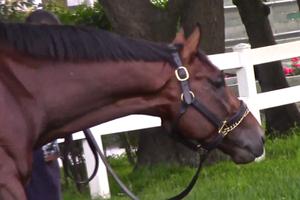 Tonalist - Tonalist after the Belmont