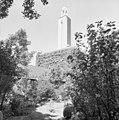 Toren - Velsen - 20240620 - RCE.jpg