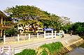 Trường Tiểu học Bùi Thị Xuân.jpg
