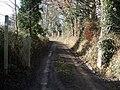 Track, to Nethercott Barton - geograph.org.uk - 1134766.jpg
