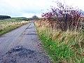 Track to Braeriach, North Eddieston and Easterhill - geograph.org.uk - 628092.jpg