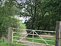 Track to the Lakeside, Hoyle Mill Dam - geograph.org.uk - 249329.jpg