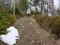 Trail near Sonnenkappe 13.jpg