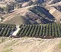Train in San Timoteo Canyon, Redlands, CA 3-2012 (6836331484).jpg