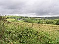 Treansallagh Townland - geograph.org.uk - 213250.jpg