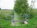 Tree lined ditch - geograph.org.uk - 463804.jpg