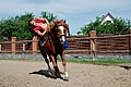 Trick riding (7236494742).jpg