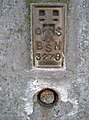 Trig Point flush bracket on Brean Down (geograph 1902241).jpg