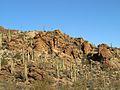 Tucson Mountain Park.jpg