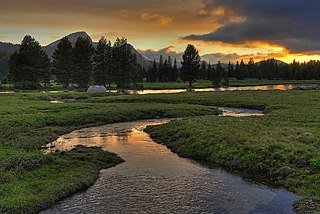 Tuolumne Meadows sub-alpine meadowy section of the Tuolumne River