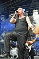 Turock Open Air 2013 - Wolfchant 08.jpg