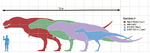 Tyrannosaurusscale.png