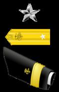 USA - PHS - O7 insignia