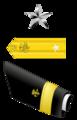 USA - PHS - O7 insignia.png